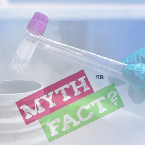 myth facts ivf